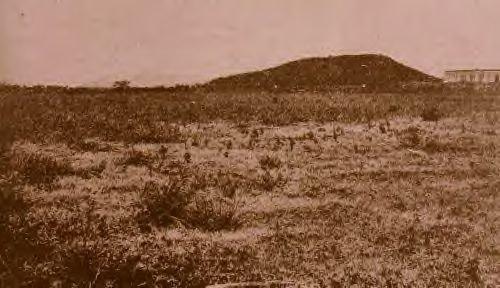 Yauco Battlefield 1898