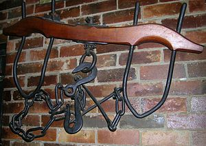 Oxbow -  A wooden yoke, bows, and chain as used by a pair of bullocks or oxen in a team.