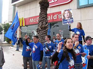 Elections in Israel - Campaigning in the 2009 Israeli legislative elections