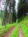 Z Turskej do Medzihorskej doliny - panoramio.jpg