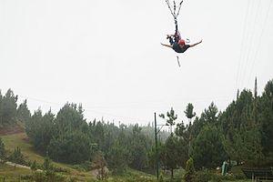 Manolo Fortich, Bukidnon - Image: Zipline Dahilayan Upload 2
