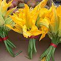 Zucchini flowers - stierch.jpg