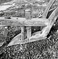 """Drvu""- plug samec, Žužemberk, Cvibelj 1957 (2).jpg"
