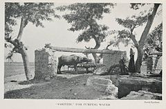 """Sakiyeh"" For Pumping Water (1906) - TIMEA.jpg"