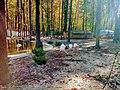 «Фельдман-Екопарк»-регіональний ландшафтний парк у Дергачівському районі Харківської області(6).jpg