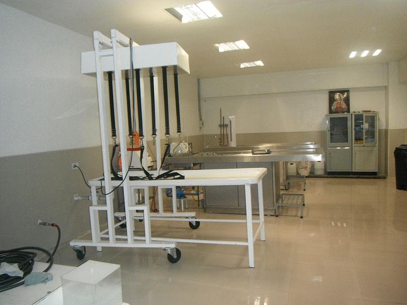 Embalsamamiento 800px-%C3%81rea_para_embalsama