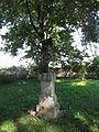 Česká Skalice, vojenský hřbitov bitvy roku 1866 (19).jpg