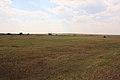 Бассейн речки Муелды в юго-западном направлении - panoramio.jpg