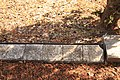 Братська могила воїнів Радянської Армії Григорівка IMG 0840.jpg