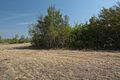 Вид на юго-восток - panoramio (5).jpg