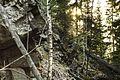 Г.Знакомая - panoramio (10).jpg