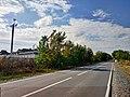 Дорога на станцію Скібневе восени, фото 1.jpg