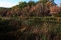 Краски осени на озере Попово - panoramio.jpg