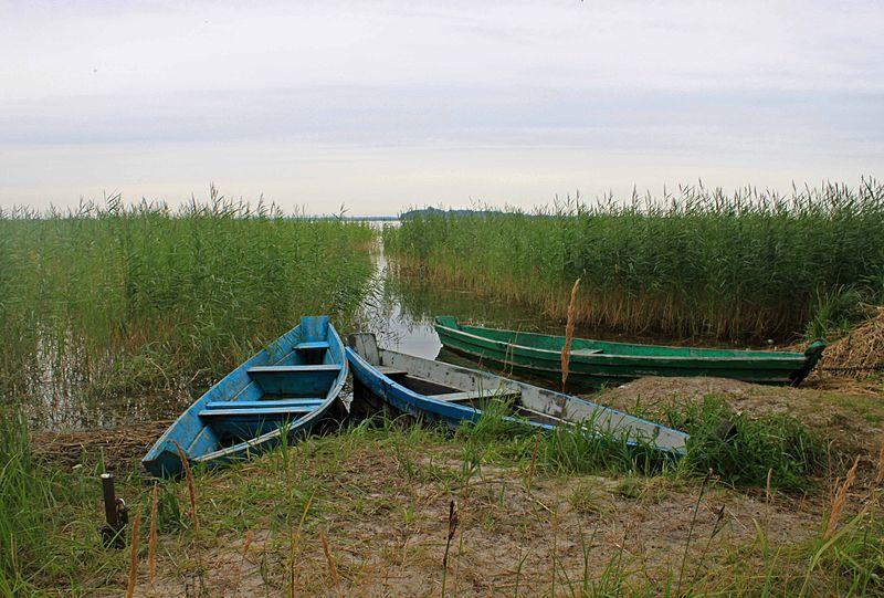 File:Озеро Світязь 2.JPG