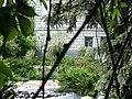 Погляд на дворик будинку вчених.JPG