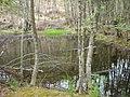 Самево Езеро (Езерче) 08.jpg