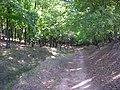 Спуск в Берёзовую рощу - panoramio.jpg