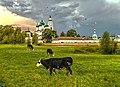 Толгский женский монастырь в Ярославле.jpg