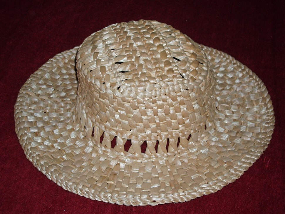 f2c69a25d7ee5 Straw hat - Howling Pixel