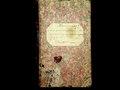 Фонд 403. Опис 1. Справа 7. Метрична книга реєстрації актів про народження. Бобринецька синагога. (1858 р.).pdf