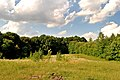 Шляхтинецький ботанічний заказник - 15070146.jpg