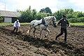 Я — русский крестьянин (фестиваль) 09.JPG