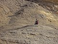 جبل نقلون مدينة ال فيوم الجديدة.jpg