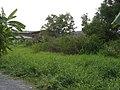 บ้านพร้อมที่ดิน - panoramio - CHAMRAT CHAROENKHET (3).jpg