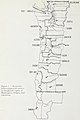 """""""Economic areas and growth centers in Douglas-fir region of Washington, Oregon and California"""" map (figure 1) - Timber flows and utilization patterns in the Douglas-fir region, 1966 (IA CAT92272726) (page 10 crop).jpg"""