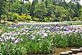 ときわ公園 - panoramio (4).jpg