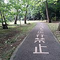 サイクリングコース歩行禁止 (14610602746).jpg