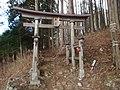三峰神社奥宮鳥居 2011-02-27 - panoramio.jpg