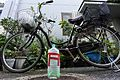 佃自転車前鳥居 (23347536670).jpg