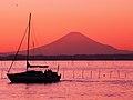 富津みなと公園 - panoramio (2).jpg