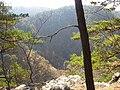 岩泉町大牛内の峰々 Iwaizumi-chou Oousinai - panoramio.jpg