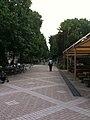 愛媛県松山市 - panoramio (8).jpg