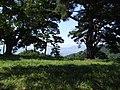 桑原城址山頂 - panoramio.jpg