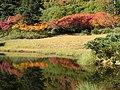 滝見沼 - panoramio.jpg