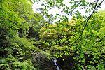白岩の滝 - panoramio (29).jpg
