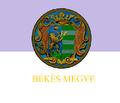 ..Bekes Flag(HUNGARY).png