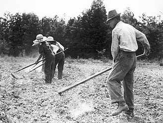 Weed control - Weed control, circa 1930-40s