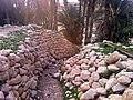 101) El Kantara (Algerie).jpg