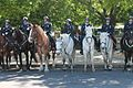 12.MountedPolice.NPOM.WDC.15May2017 (34139030533).jpg