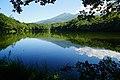 140829 Yonko of Shiretoko Goko Lakes Hokkaido Japan01n.jpg