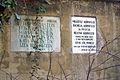 1416viki Cmentarz żydowski przy ul. Lotniczej. Foto Barbara Maliszewska.jpg
