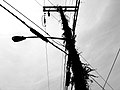 2005-07-30 - US - New York - Long Island - North Fork - Cutchogue - Telephone Pole (4887575779).jpg