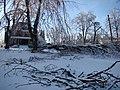 2009 winter storm damage; South Broadway Street, Georgetown, Kentucky.JPG