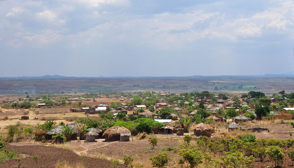 Economic history of Africa Wikipedia