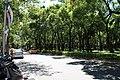 2010 07 22590 7029 Da'an District, Taipei, Streets in Taipei, Parks, Taiwan.JPG