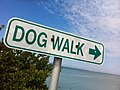 2011-365-53 Walk This Way (5469998240).jpg